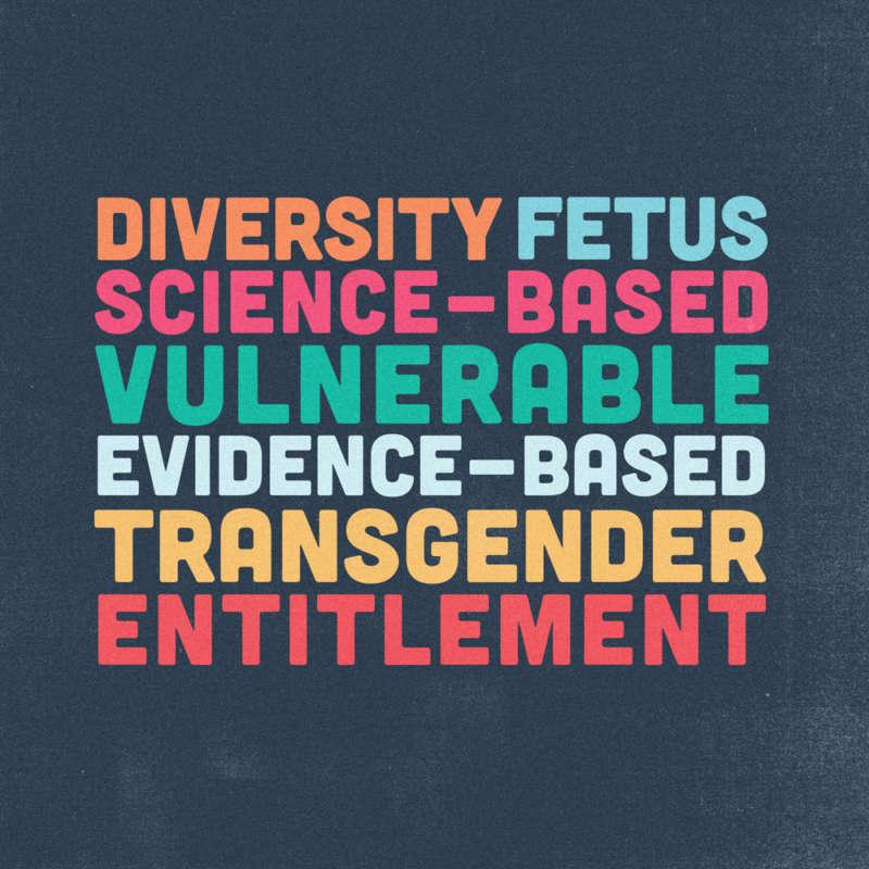 "Words in bright colors read ""Diversity, Fetus, Science-Based, Vulnerable, Evidence-Based, Transgender, Entitlement."""